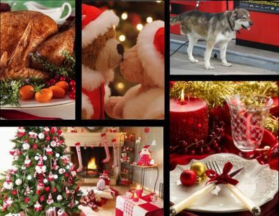Chapitre 25 :  Noël