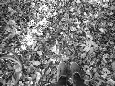 Poème: Là où mes pieds m'emmèneront (31/10/2015)