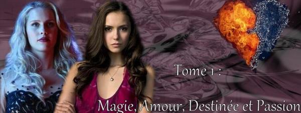 Magie, Amour, Haine et Destiné : Des mots qui ne cherchent qu'une chose : la passion
