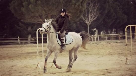 « Monter un cheval vous donne un goût de liberté.  » Helen Thomson . ♥