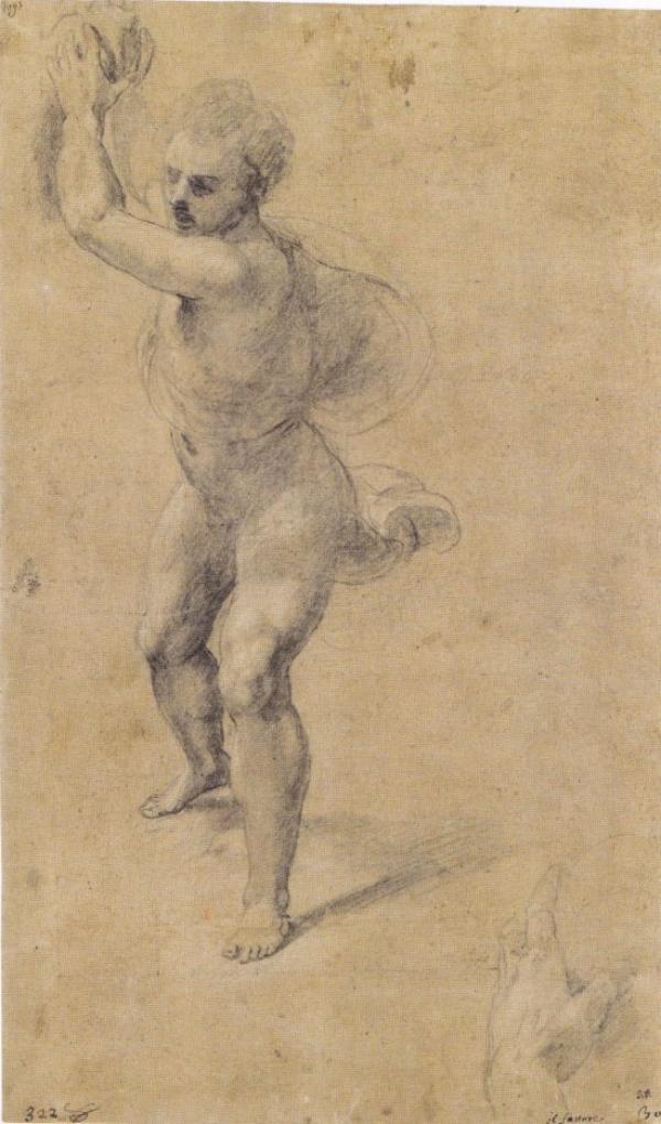 Belles oeuvres de Raphaël