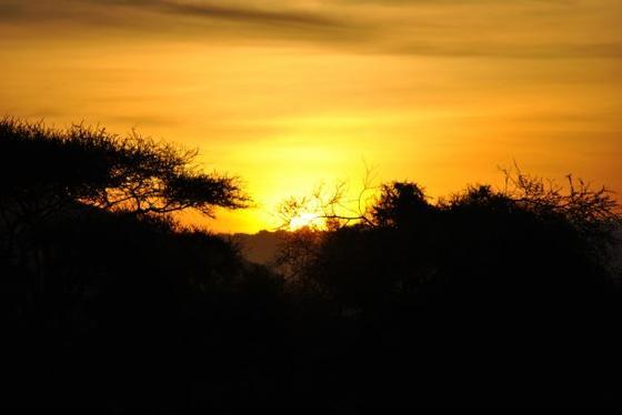 Vacances au Kenya