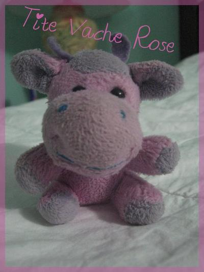 Biographie de Tite Vache Rose : photo/montage par moi