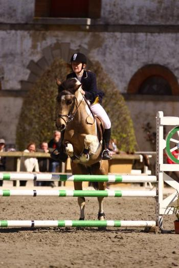 Championnats de Bretagne Lamballe Club poney Elite - Finale