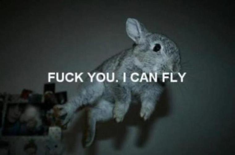Fuck you *u*
