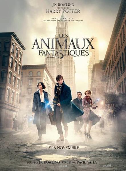 Les Animaux Fantastiques, le film !