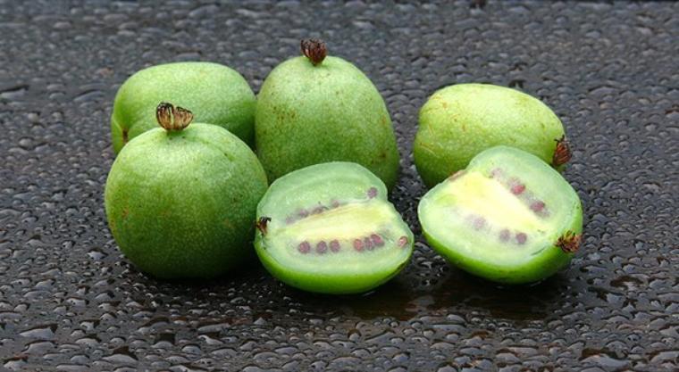 les fruits méconnus  connaissez vous le kiwaÏ?