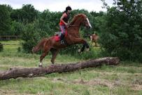 L'équitation, plus qu'une passion.