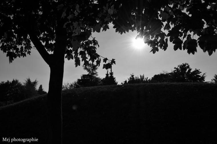 Parc Pontalis - Taverny.