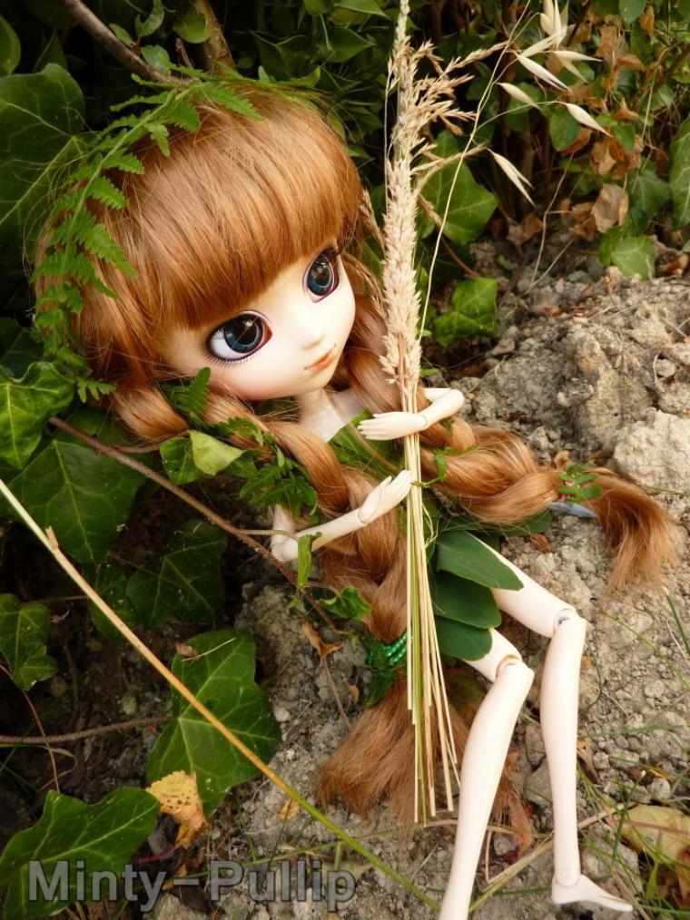 Photo pour le concours de Zoe0512.Thème:La nature.