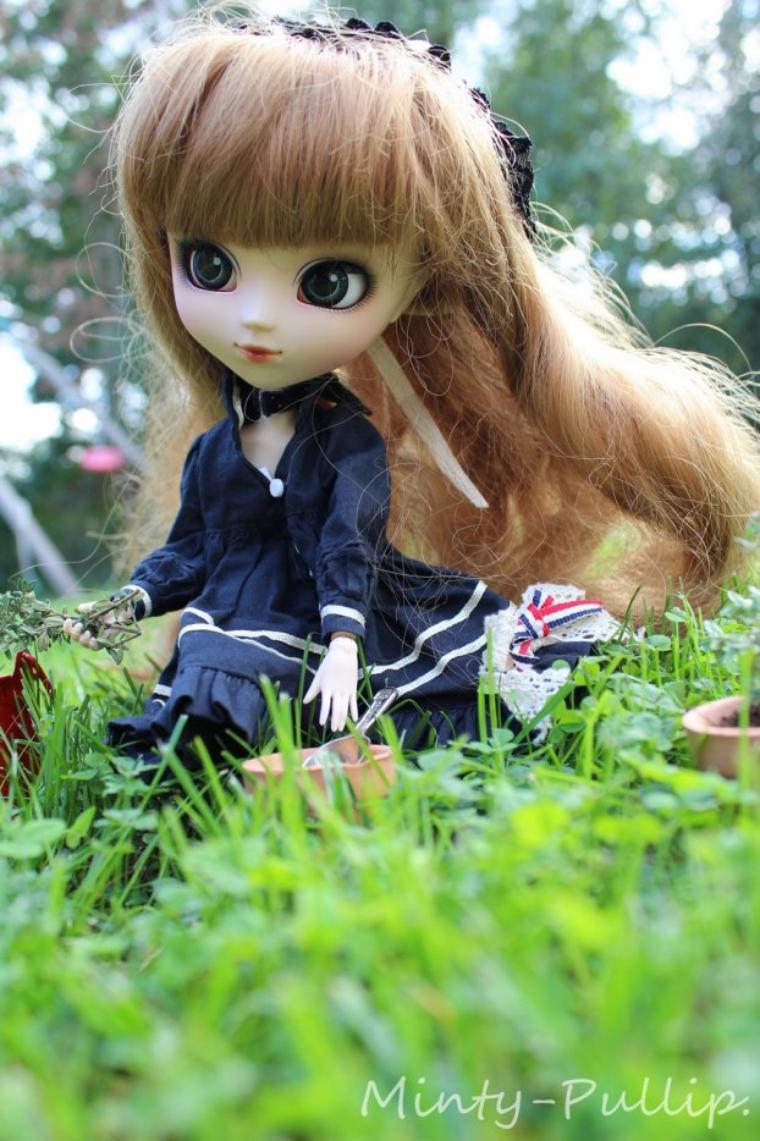 """""""Un jardin, même tout petit, c'est la porte du paradis.""""  Marie Angel"""