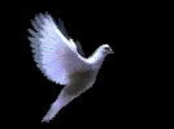 QUE LA PAIX SOIT AVEC VOUS !!!!Conquérons le monde avec notre amour. Entrelaçons nos vies, tissons-les des liens du sacrifice et de l'amour, il nous sera possible de conquérir le monde