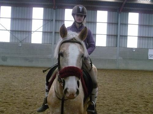 Le cheval vaut plus que la richesse...♥