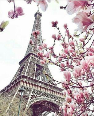 Allons à Paris !