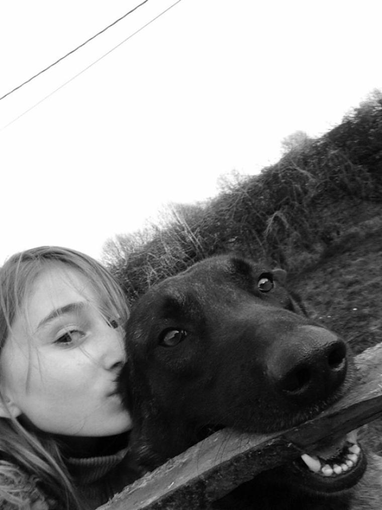 Dur de faire confiance à l'être humain, même les aveugles préfèrent se faire guider par des chiens