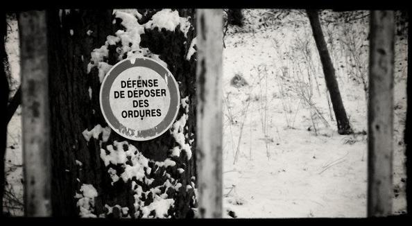 La Photographie - Session sous la neige Première Partie