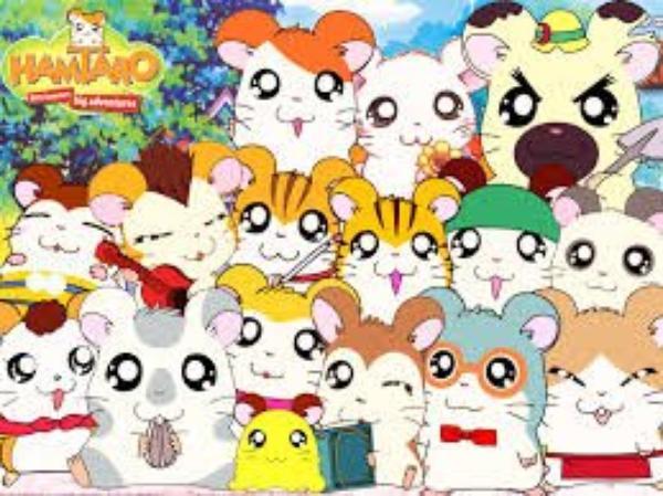 Hamtaro : le manga de mon enfance ♡