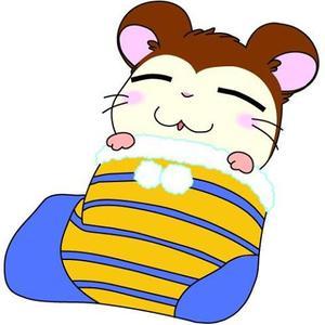 Hamtaro :  suite ♡♡