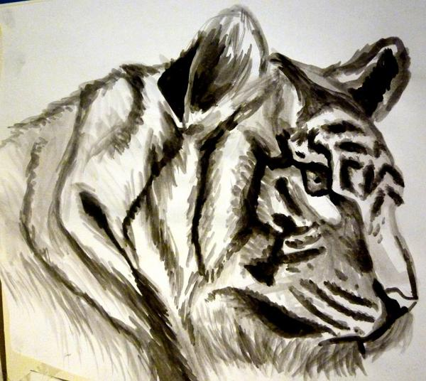 Wild Animals (Aquarelle)