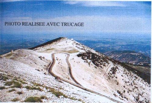 Cinglé, matricule 1198 (juin 2004)