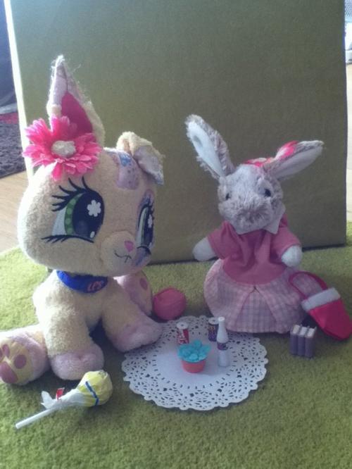 Pique-nique avec Petshop Rabbit ^^
