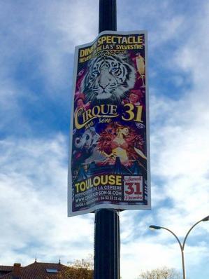 VOTRE CIRCOPHILE DU SUD PARTICIPE À LA PUBLICITÉ DU CIRQUE SUR SON 31 ! L'ÉVÈNEMENT D'EXCEPTION UNIQUE EN FRANCE À NE PAS MANQUER !