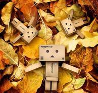 -> Offres D'automne <-
