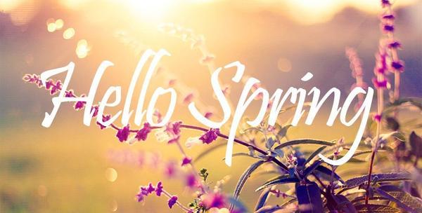 Bonjour tous le monde!!!!