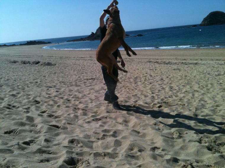 Trop puissante jvous dit 35 kiloo la famille ell saute 1.80' en détente sèche pfffffffff