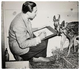 Bambi (1942/2006)