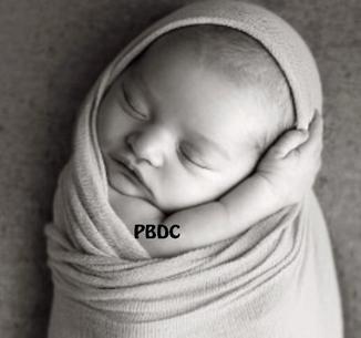 Katie Price est Maman de Bébé N°5!