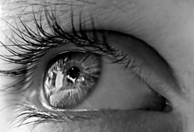 Le regard est le médiateur des coeurs