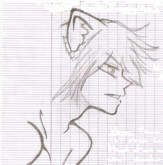 Dessin n1: Ukyo de monochrome animals 1/4