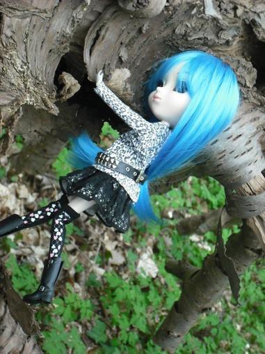 promenons-nous dans les bois ........