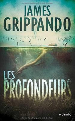 . Les profondeurs - James Grippando .