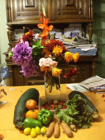 On viens d' arroser le jardin et de ramener des légumes et fleurs du jour