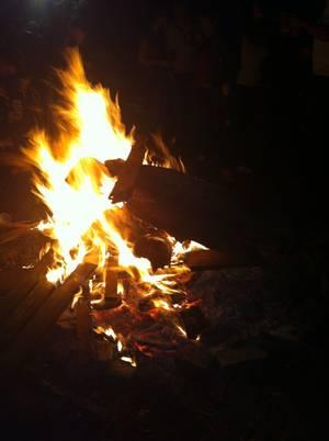 La Foret dans les bois - Aout 2012