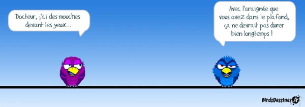 INsoliteRIgoloCOquin - Page 3 ?c=isi&im=%2F7005%2F93767005%2Fpics%2F3270446334_1_10_oA8Ehw7f