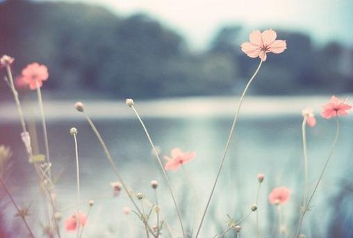À la fin de la journée, ce que nous voulons vraiment, c'est être aux côtés de quelqu'un. Tout ce rituel, prendre de la distance, et faire semblant de ne pas se préoccuper des autres, c'est des conneries. Grey's Anatomy.