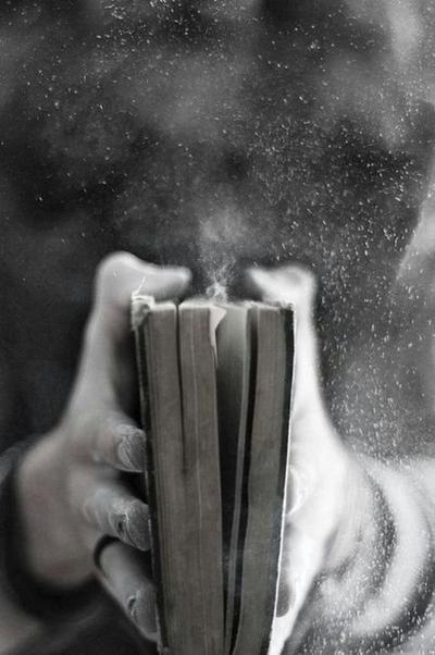 Tout est dit. C'est fini. Fin de l'histoire, fin du livre.