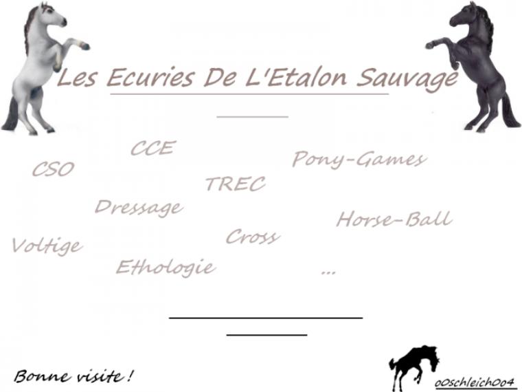 ♥L'écurie de l'Etalon Sauvage♥