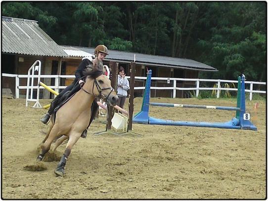 Le cheval porte son cavalier avec vigueur et rapidité. Mais c'est le cavalier qui conduit le cheval. Le talent conduit l'artiste à de hauts sommets avec vigueur et rapidité. Mais c'est l'artiste qui maîtrise son talent.