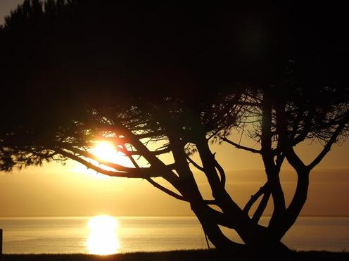 Avoir le temps d'admirer un coucher de soleil , est l'une des plus belles choses de la vie ...