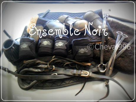 Matériel Noir / Cheval / cheval996