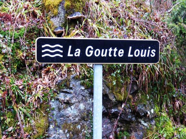 Goutte Louis, mars 2017