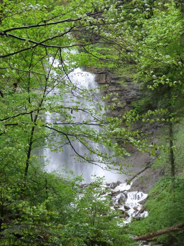 Cascade de l'Englenaz à Cluses, mai 2017