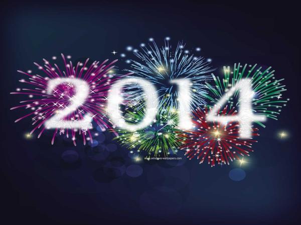 Bonne année 2014 / Bilan annuel 2013