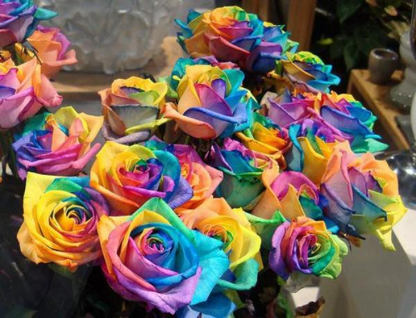 ......Rainbow Girl .......>3< ......^Δ^......!!!
