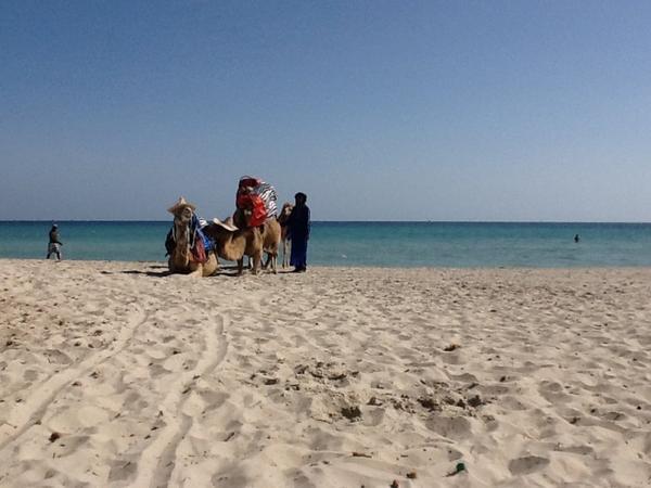 plage de Djerba