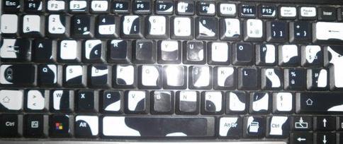 Mon clavier ressemble au dos d'une vache ^^